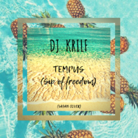 DJ KRILF - TEMPUS (Sagan Cover)