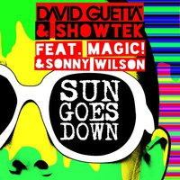 Fabien Jora - David Guetta & Showtek vs Botnek - Tremors Sun Goes Down (Fabien Jora Festival Mashup)