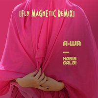 Xylenefree a.k.a.Fly Magnetic a.k.a.Creative Child - A-Wa - Habib Galbi (Fly Magnetic Remix)